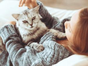 Kat met baasje